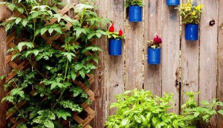 Scari de gradina, un decor minunat pentru curtea casei