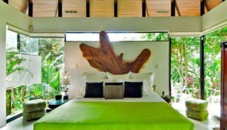 Dormitoare tropicale